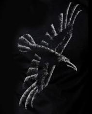 Flying Raven Hrafninn flýgur